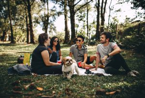 Four friends talking about Florida college life.
