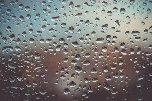 preventing mold in storage units - Water drops