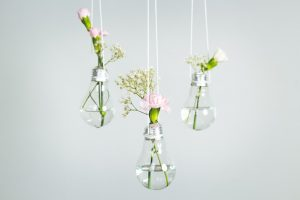 Flowers in light bulbs DIY.