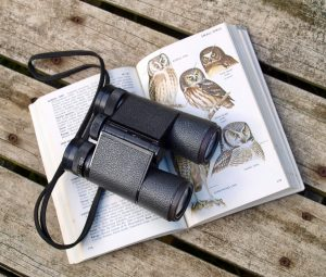 Binoculars rest on a bird identification book open to a page on owls