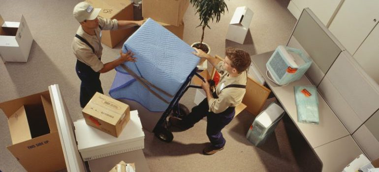 Two commercial movers Boca Raton carrying boxes in an office