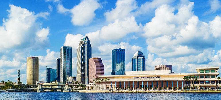 Tampa panorama