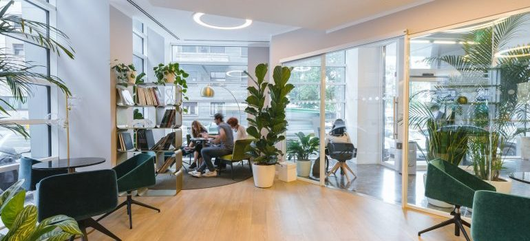 Spacious office full of light, plants, and modern furniture
