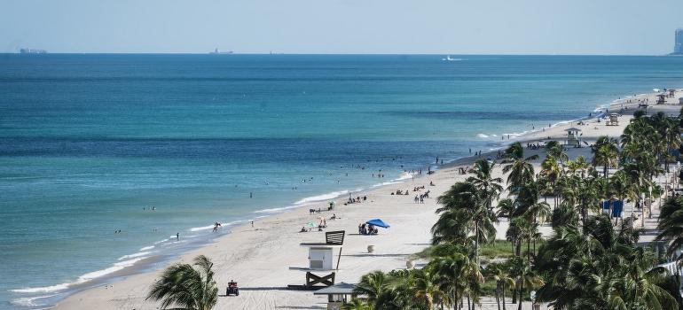 Beach in Hollywood FL
