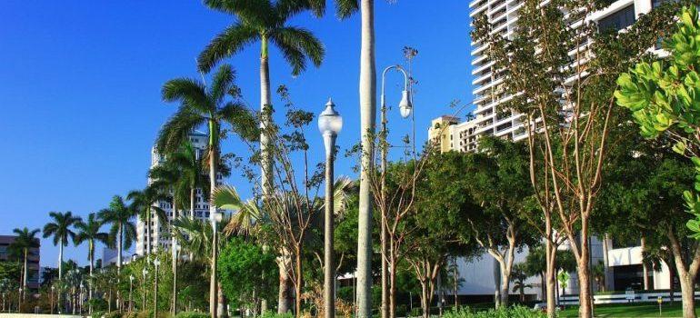 A street in Palm Beach, FL