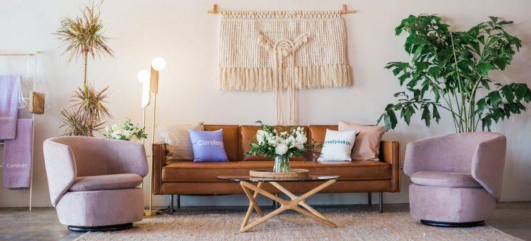 rustic sofa bed