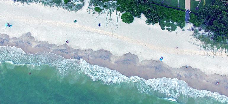a beach in Naples FL