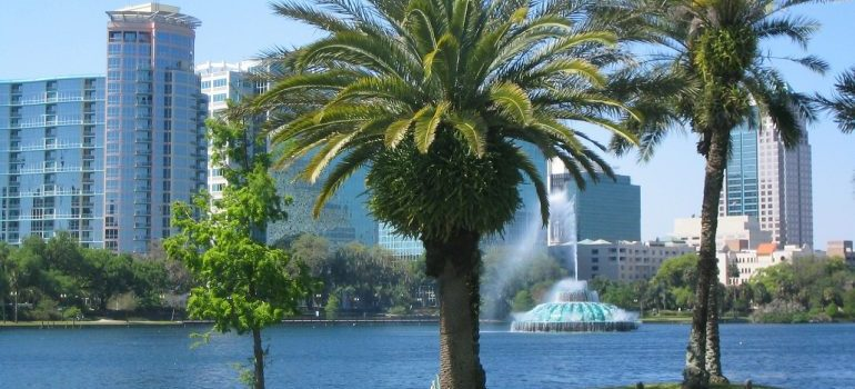 View of Orlando in Florida on palms, buildings, and fountain.