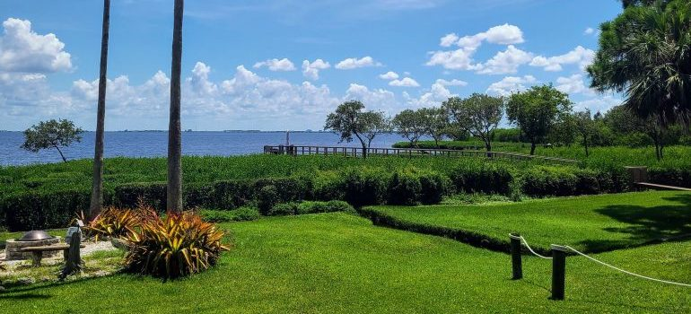 nature in Safety Harbor Florida, one of the best small towns to live in Florida